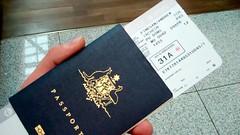 brand(0.0), pattern(1.0), passport(1.0), identity document(1.0), document(1.0),