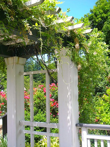 Frelinghuysen Arboretum Trellis