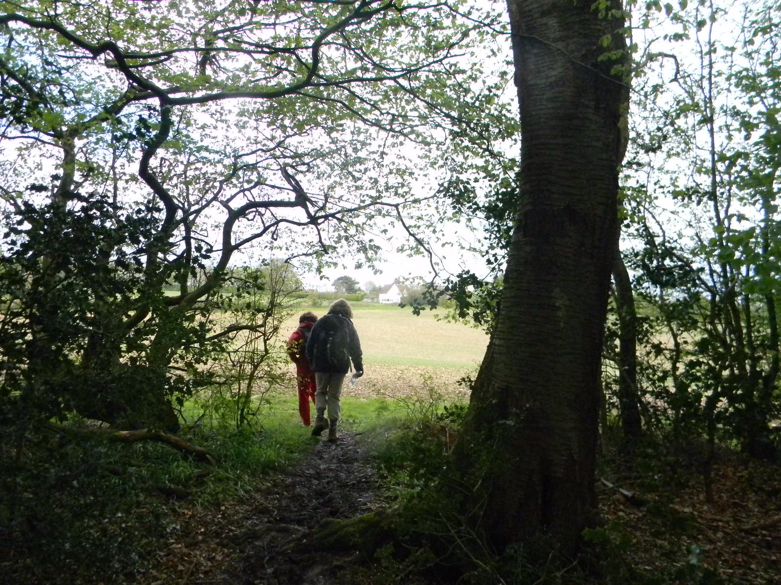 Into a field Wendover Circular via Lee