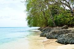 Barbados-2MY_2861