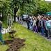 Baumpflanzung RSO 020