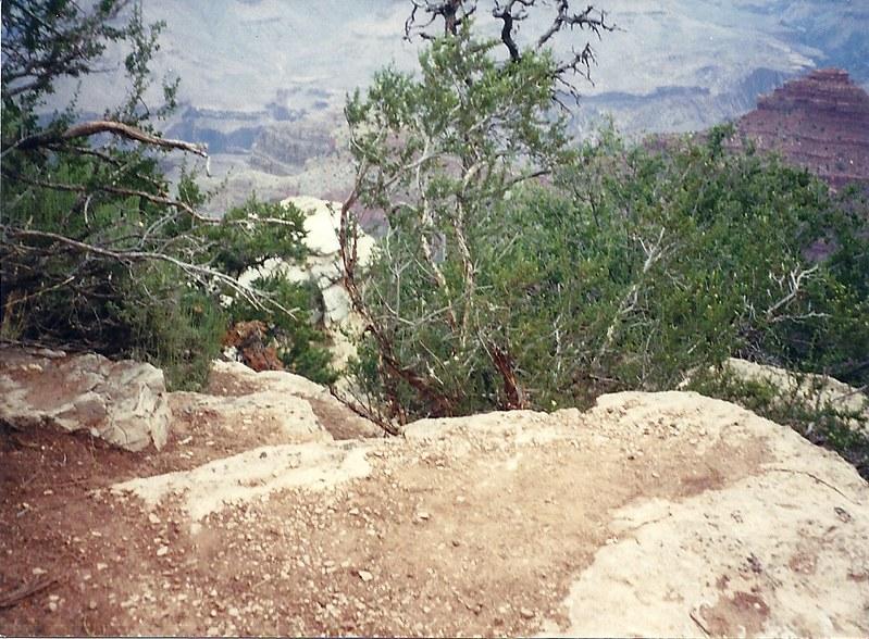 Grand Canyon 09