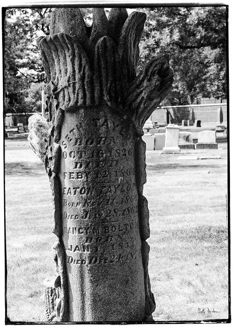 Seth Taylor - Graceland Cemetery