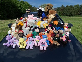 KKF at BrogdaleTeddy Bears  Picnic May 2013  (2)