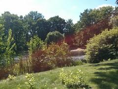 At Tiergarten
