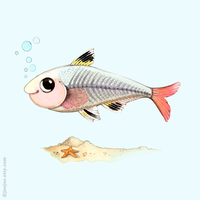 Alphabet animals . X-ray fish