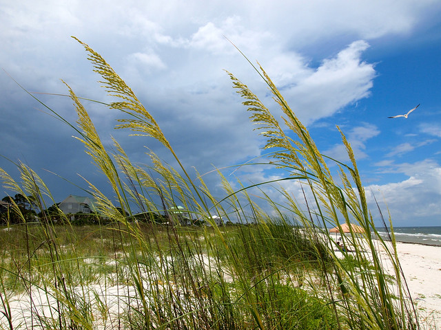 St. Joe Beach on Florida's Gulf Coast