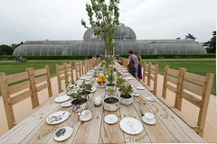 Rose Garden Tea Party
