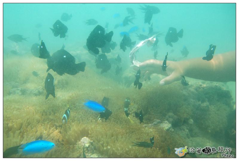 2013歐船長東海休閒漁業_86