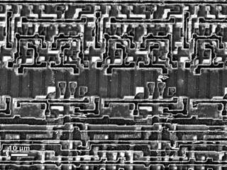 Semiconductor Integrated Circuit (IC), BSE Image from ZEISS EVO