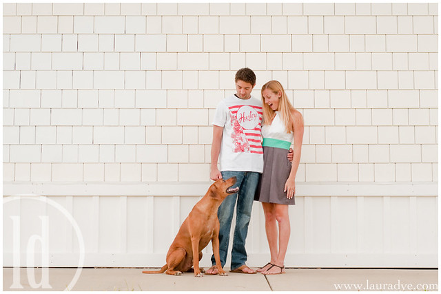 dog, couple, engagement
