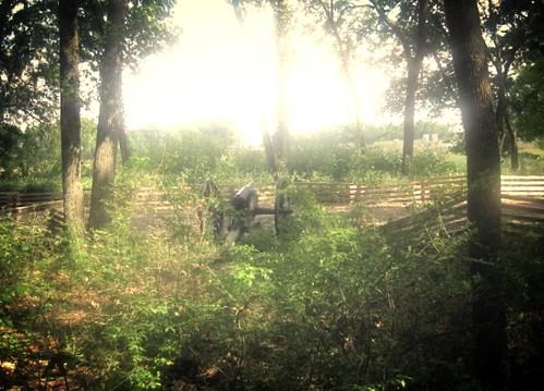 6 pounder Wiard Rifle - Stones River Battlefield