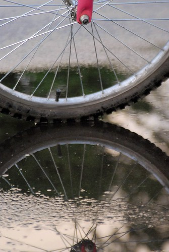 bike wheel reflection in puddle