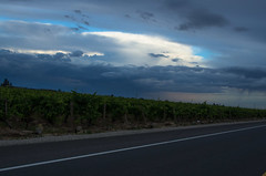 An Evening Thunderstorm over the San Joaquin Valley 3
