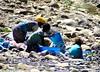 Environmental threats to Ethiopia's water resources