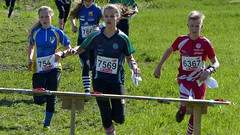 Finnish Orienteering Championships in Middle Distance - qualification(Ikaalinen, 20150524)