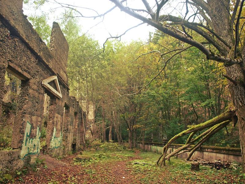 Brestovac Sanatorium (11)