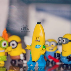Banana! #afol #Lego #toyphotography #legophotography #bricknetwork #minions #minifigures #legography #banana #costume #food #brickstagram #bricksinfocus #legostagram #legoguy #lego_hub #toyslagram_lego #toyartistry_lego #jemthecrow