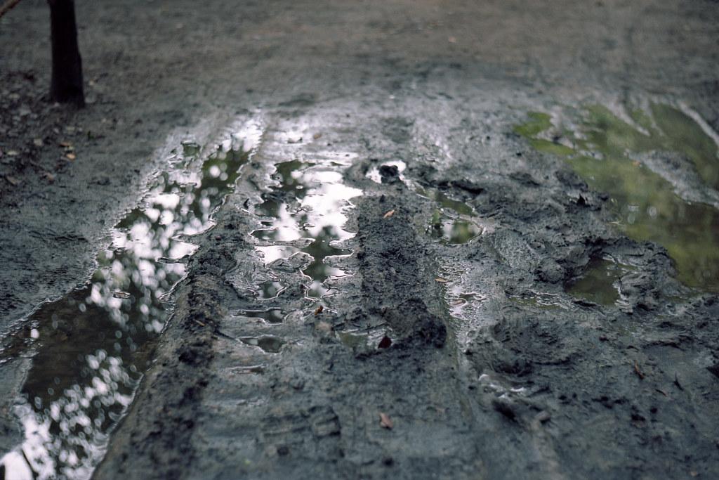 ritsuringarden (栗林公園)