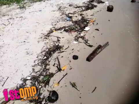 Beach-goer can't enjoy stroll along Changi shoreline as it's strewn with rubbish -data