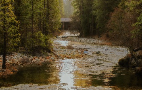 california trees nature forest rocks stream coveredbridge yosemitenationalpark mercedriver wawonahotel