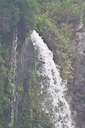 waterfall at mt gede