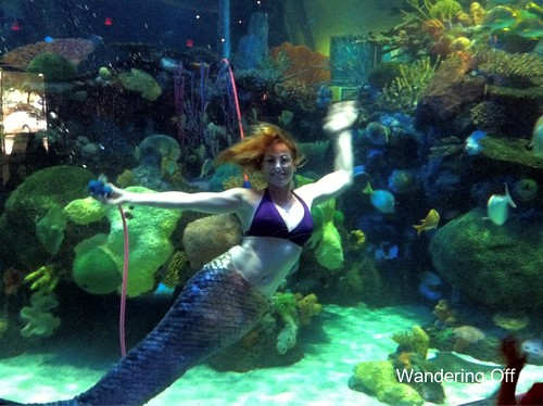 Mermaid at Silverton Casino's aquarium, Las Vegas
