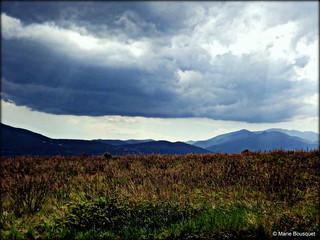 Ciel menaçant sur les hautes herbes
