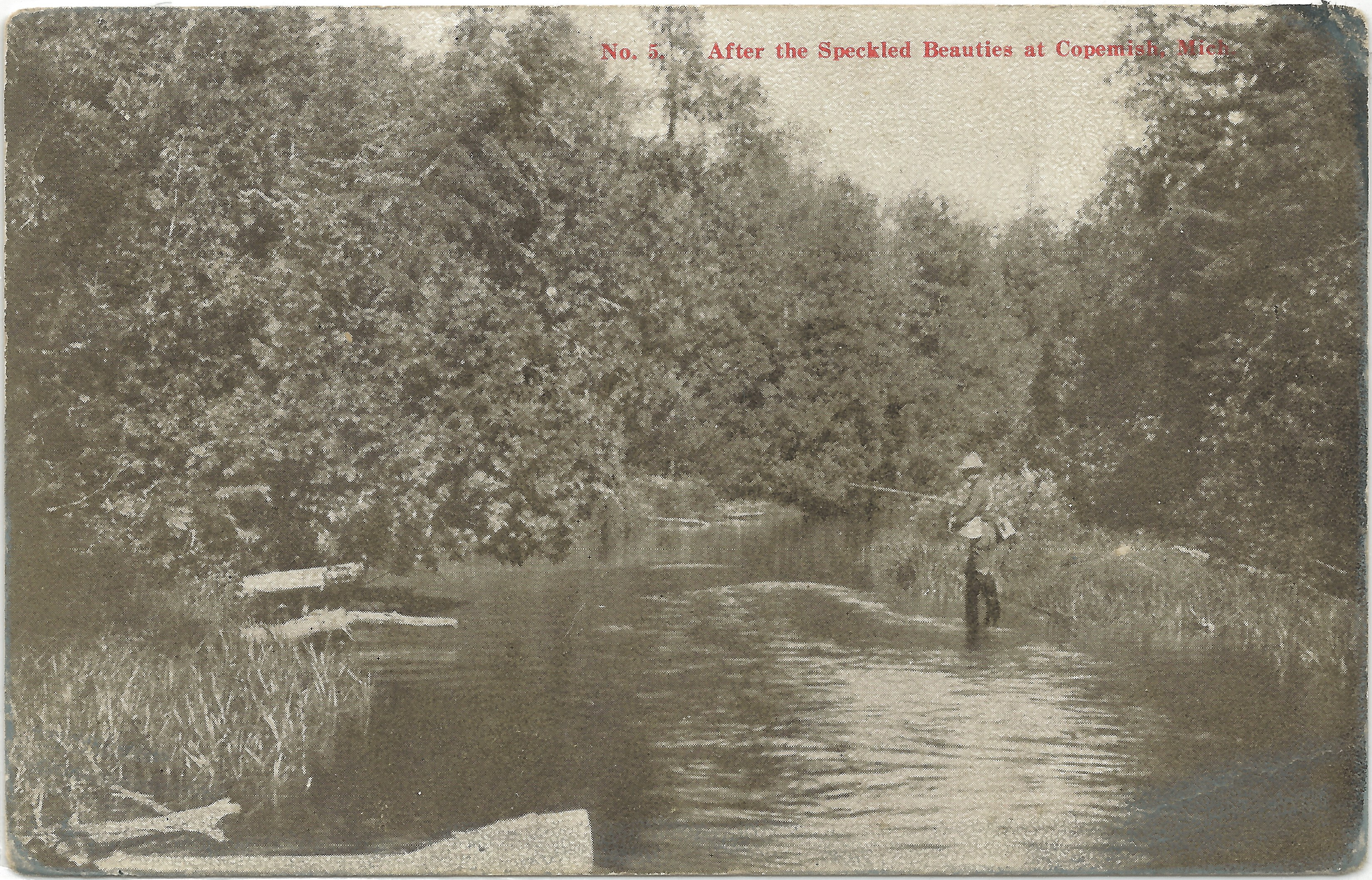 Nw copemish mi happy fella looking for trout fly fishing for Bear creek fishing