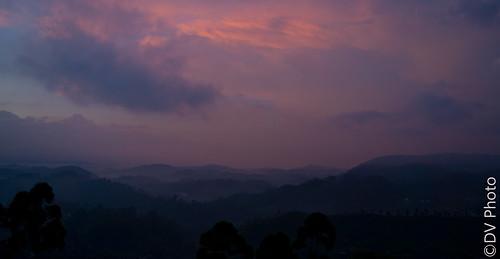sunset mist tea sony hills srilanka