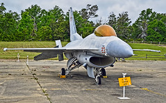 1975 F-16N Viper BuNo 163572 (C/N: 3M-17) VF-45 (National Naval Aviation Museum)