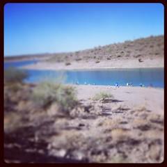 #fishing at the lake.