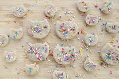 cake batter cats IMG_2692