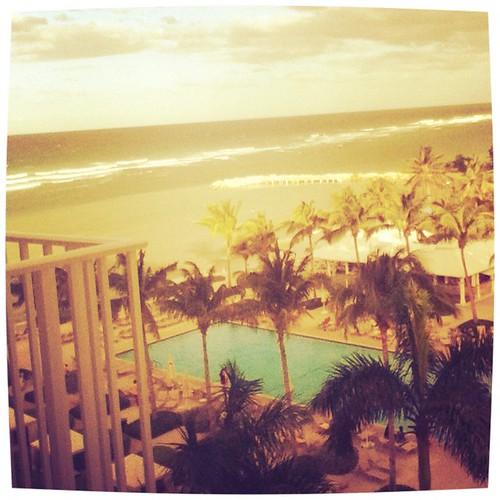 flashbackfriday bahamamamas windowveiw uploaded:by=flickrmobile flickriosapp:filter=iguana iguanafilter