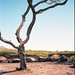 LeicaM^_Portra_400017-2 by M + B