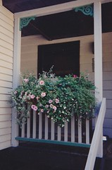 2000 window box