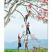 01255553938 by tranbaohoa.com