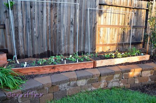 gardening 5/6