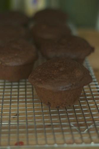 chocolatericottamuffins