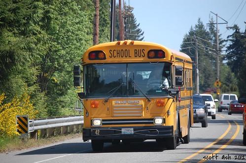 bus schoolbus kitsapcounty 3500views bluebirdbus poulsbowa nikond40 bluebirdschoolbus 051912