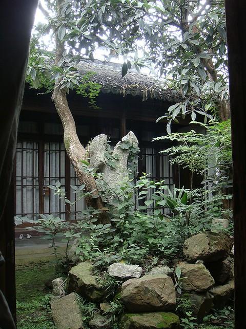 06 小雅的院子