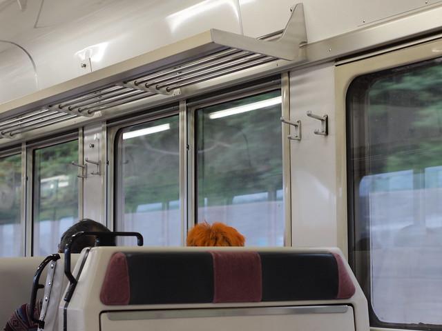 2013.05.19 飯田線車内