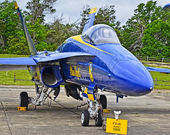 FA-18 Hornet (Blue Angels) (National Naval Aviation Museum)
