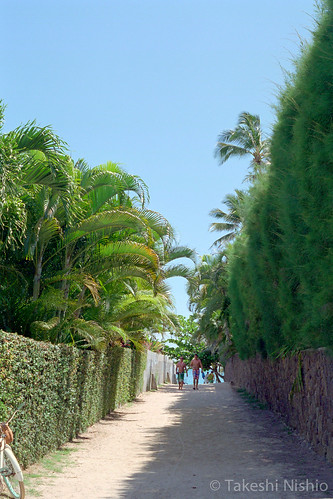 ビーチへの小径 / Pathway to Lanikai beach