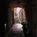 Corniglia Arch