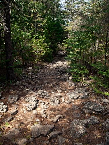 marr-lake-trail-03