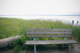the beach bench
