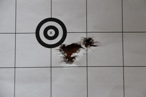 5 Shots TRG-42