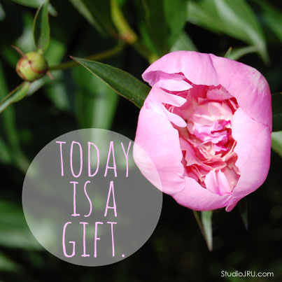 today-is-a-gift-peony-StudioJRU
