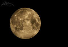 Full Moon 23.06